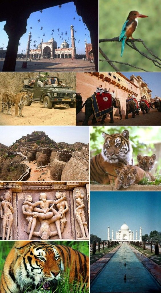 Taj Mahal India Tour 12n/13d - Tours From Delhi - Custom made Private Guided Tours in India - http://toursfromdelhi.com/taj-mahal-tour-package-12n13d-delhi-jaipur-sariska-agra-ranthambore-bharatpur-khajuraho-bandhavgarh/