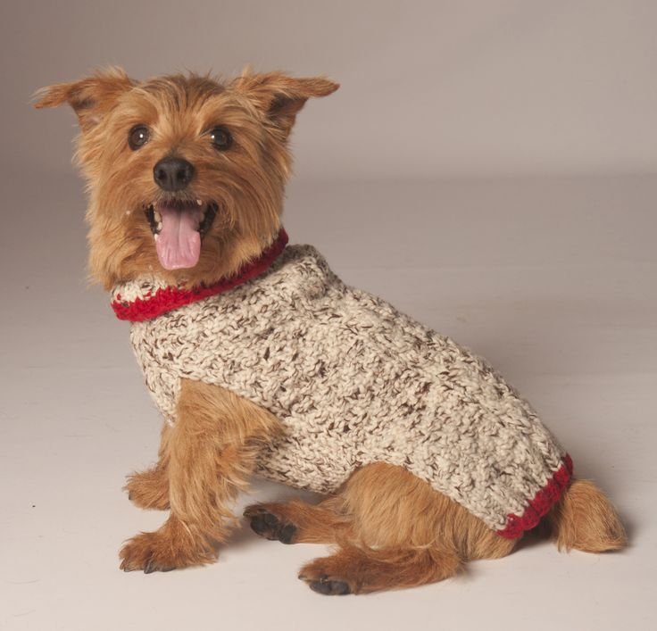 Oatmeal & Red Cable Knit Dog Sweater - Poochieheaven