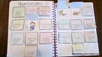 Homonyms Interactive Reading Notebook: This foldable craftivity also works well for ESL, special education and speech and language therapy. Your students will complete the sentences on each flap by writing the correct homonym. They will then color pictures and paste them under the correct flaps.