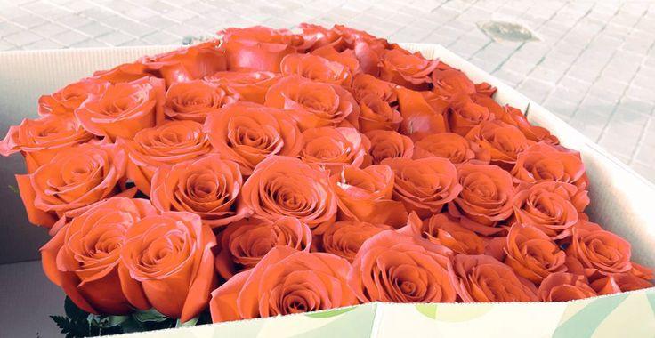 Las rosas son un clásico que no pasa de moda y más si se presenta en una original forma de corazón. #rosa #corazón #regaloromántico #amor