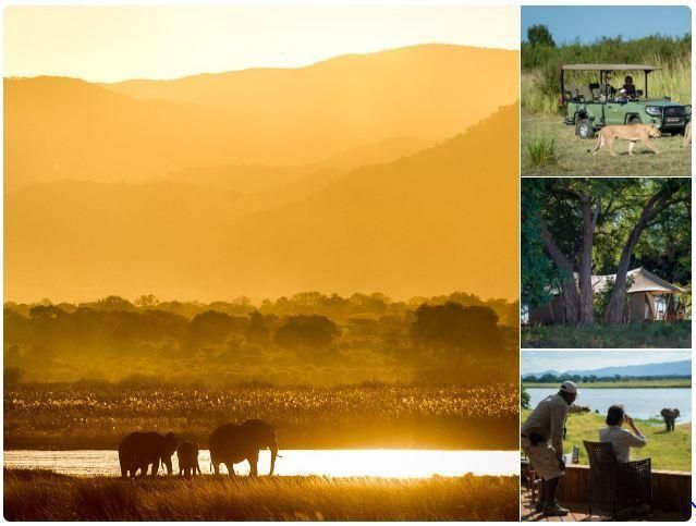 With Ruckomechi Camp opening for the season tomorrow, this informative update  from Tourism Update on Zimbabwe's extraordinary Mana Pools couldn't be better timed!