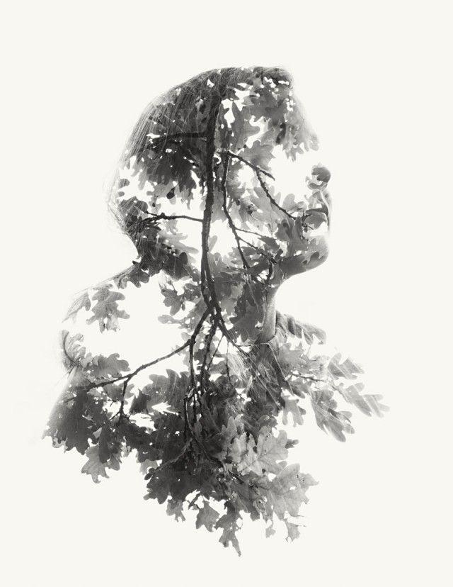 Expositions multiples par Christoffer Relander Photo