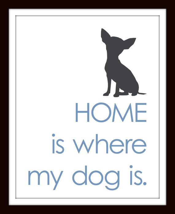 Where My Dog Is -- 11x14 on Etsy, $25.00