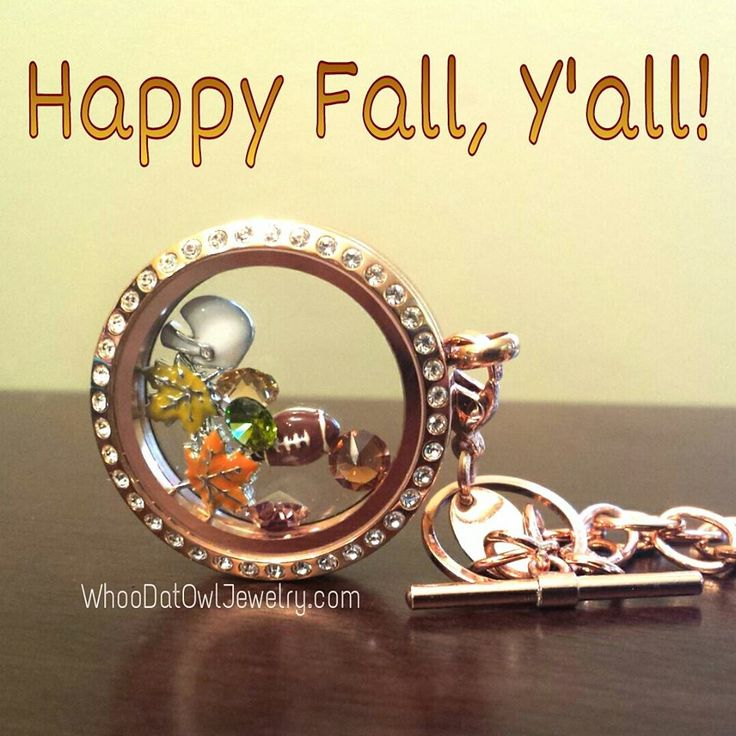 393 Best Origami Owl Images On Pinterest Living Lockets Origami