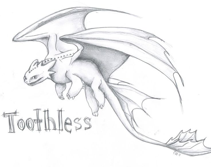Dragon Sketches and Drawings | Toothless by aussies10