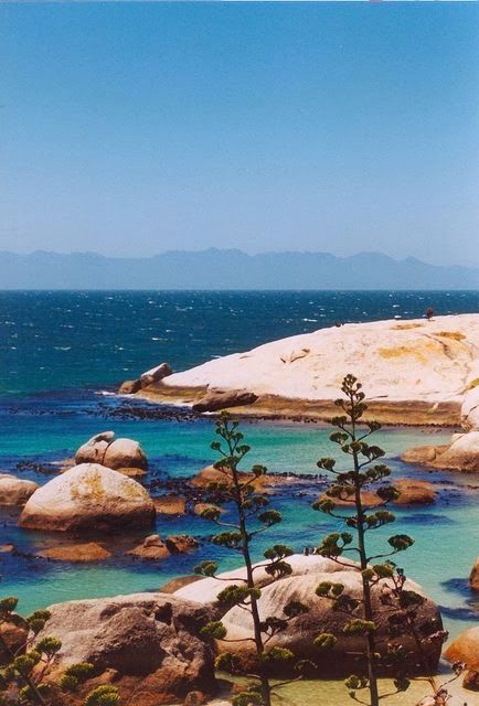 Cape Town, South Africa - the colour of that ocean!!! <3