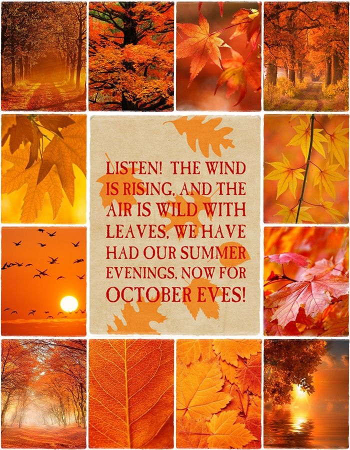 Great The Wind Is Rising And The Air Is Wild With Leaves. We Have Had Our Summer  Eveninfs, Now For October Eves!