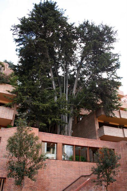 Clásicos de Arquitectura: Edificio Alto de los Pinos / Rogelio Salmona (5)