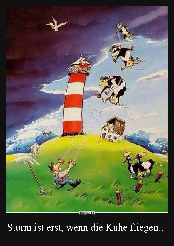 Sturm ist erst, wenn die Kühe fliegen.. | Lustige Bilder, Sprüche, Witze, echt lustig