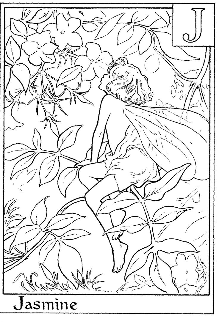 fairy printable colouring page j is for jasmine