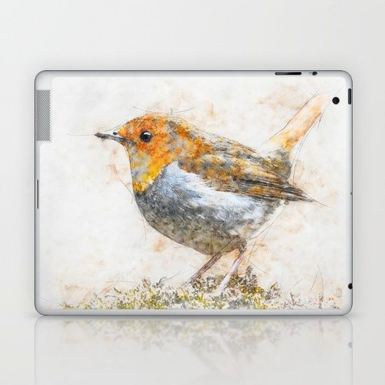 A sketch of a Red Breasted Robin Painted in photoshop