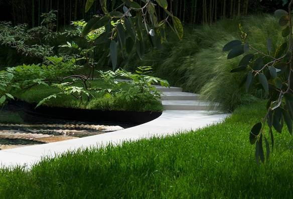 Grassy winding path - modern garden