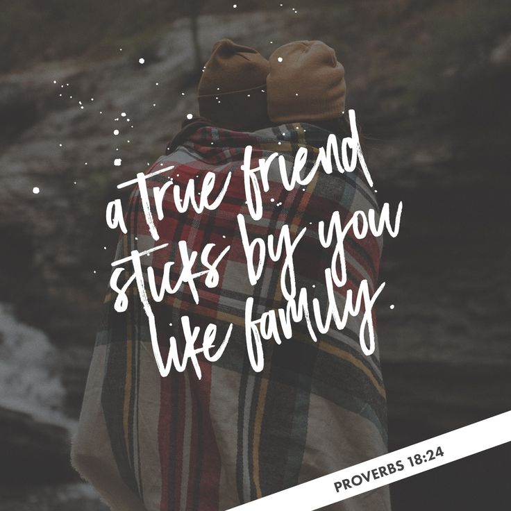 Friends come and friends go, but a true friend sticks by you like family.