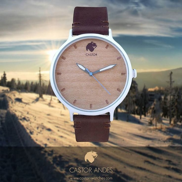 Les presentamos nuestro nuevo reloj Castor ANDES diseñado pensando en las características de nuestra cordillera invernal : Madera tierra cielo y nieve. Un modelo innovador rústico y elegante. Un trozo de la montaña en tu día a día. Diseño nacional para el mundo. Ven por el tuyo en www.castor-watches.com whatsapp: 56994033705 Envío gratis en todo #chile #castorwatches #castorandes #watch #watches #woodenwatch #reloj #relojes #relojesdemadera #accesorios