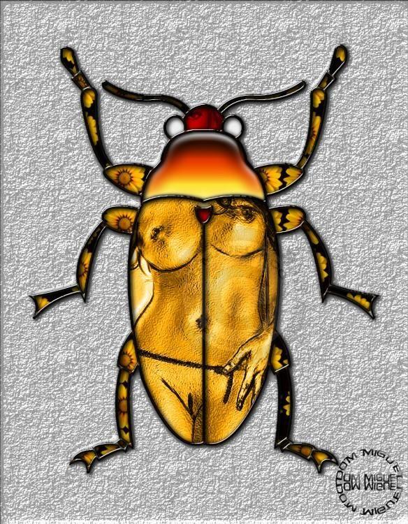 Le hanneton jaune (ABELARD)