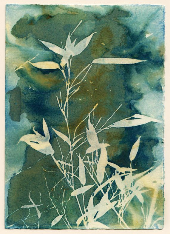 Cyanotype printing is an alternative photography process that uses sunlight to expose the image. I developed a way of taking the traditional cyanotype process and altering the process so that instead of a normal blue and white print, I could get varied shades of blue, green, sometimes even yellow creeps in. Instead of the end goal of a very tidy and neat blue and white cyanotype, the end goal is a unique, completely imperfect print.  This print comes framed. Image size is 4.5 by 6.5, in an…