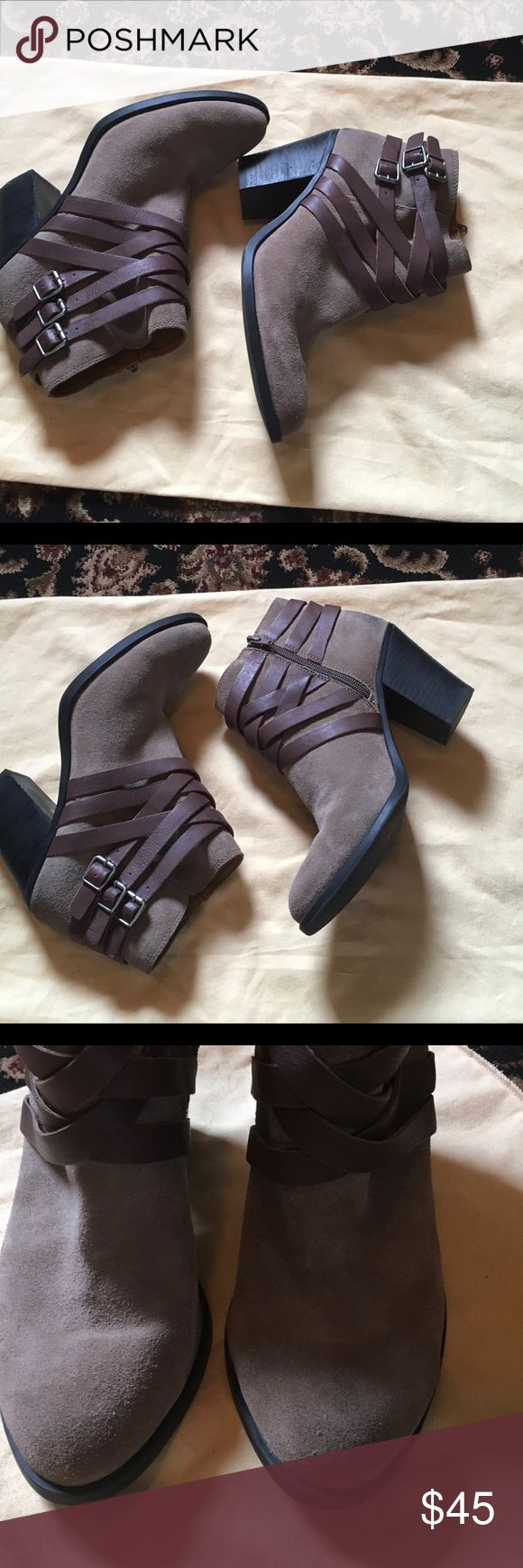 Lucky Brand Suede Booties Sz 10 Super cute and comfy suede boots with leather straps in very good condition only flaw is in back of boot jean rub mark (pic#5) Lucky Brand Shoes Ankle Boots & Booties