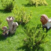 Homemade Organic Lawn Fertilizer | eHow