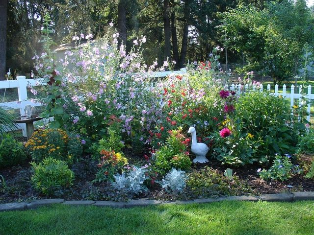 226 Best Images About Perrenial Flower Garden Sun English Cottage