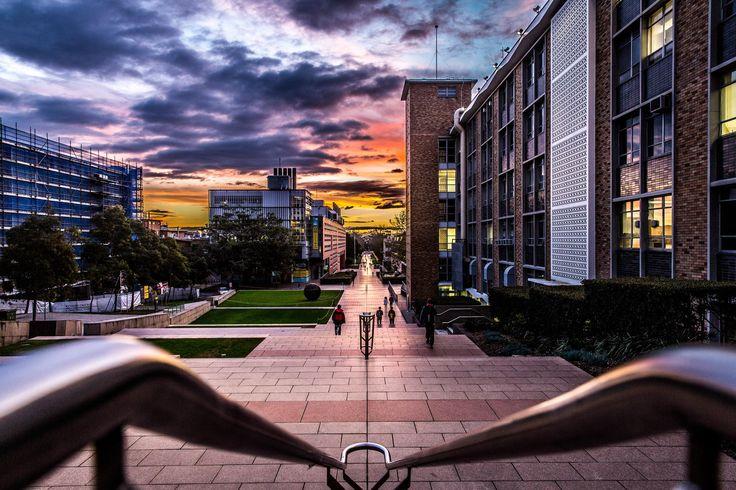 UNSW Campus by Daniel Medini on 500px