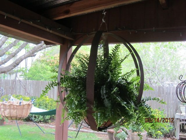 FanScapes - Re-Scape.com - Marlene H. Planter from Whiskey Barrel Rings