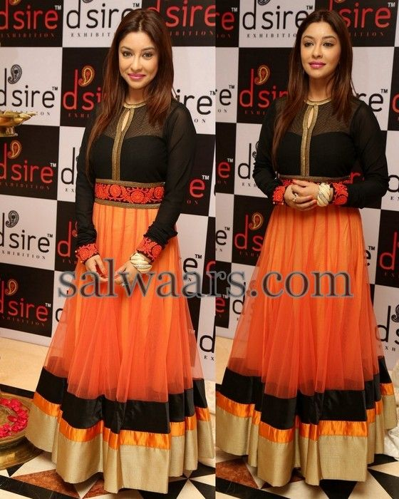 Payal Ghosh Net Salwar Kameez - Indian Dresses