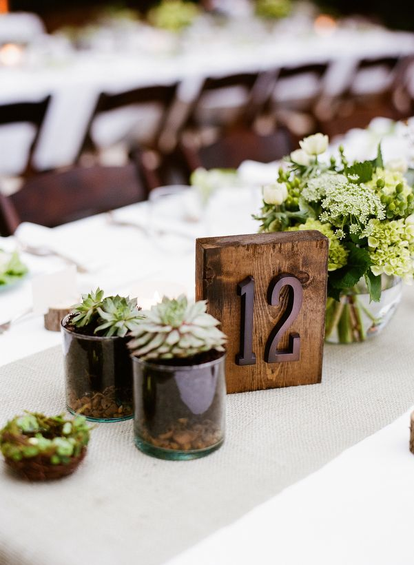 Outdoor decor:  wooden table number, succulents, birds nest.  Photo by Kate Murphy.