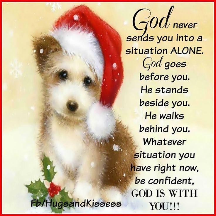 God Is With You god christmas christmas quotes funny christmas quotes religious christmas quotes cute christmas quotes christmas quotes for friends christmas quotes for family christmas pets