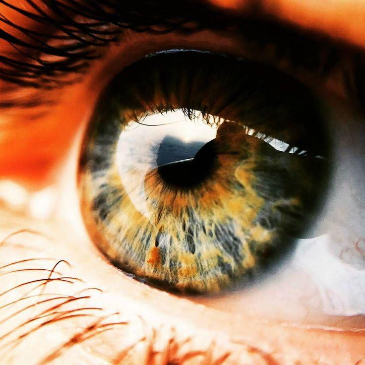 Какого цвета твоиглаза вопрос ведь фотографии которые яснял всечерно-белые. (Брет Истон Эллис) #глаза #зрачок #радужка #цвет #макро #eyes #eye #macro #color #vsco by pronto_spb