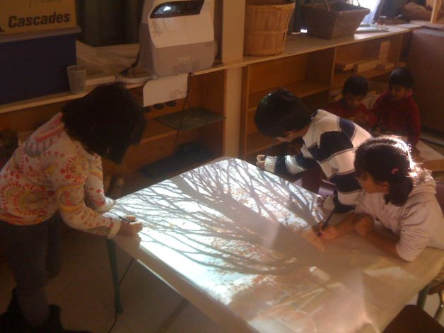 When an image of one of the local trees was projected to a table in the classroom, the children were intrigued with the task of tracing its many limbs. I noticed how this task slowed down their movements and also their consideration of the tree. After this opportunity, the children's drawings were more realistic in that long limbs were included and the proportions changed.
