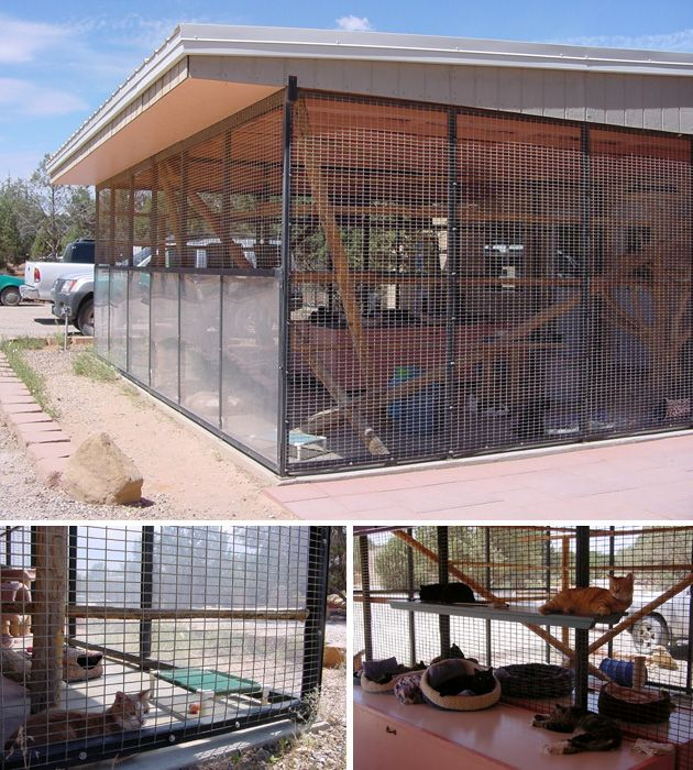 This Is How The Enclosures Look At Best Friends These Are