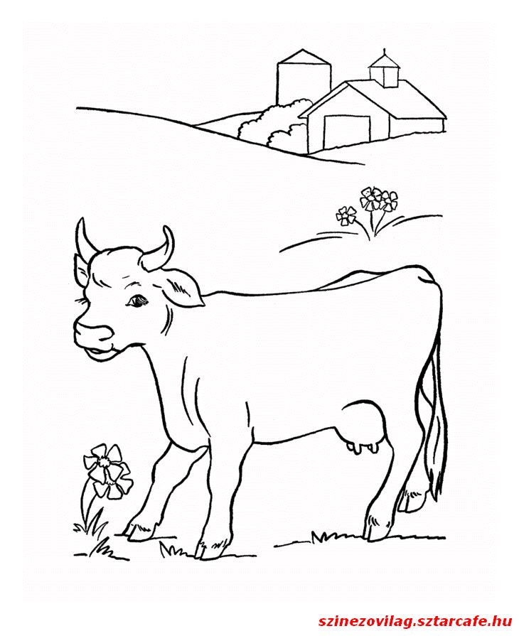 44 best PIPPO images on Pinterest   Autism, Farm animals and Farms
