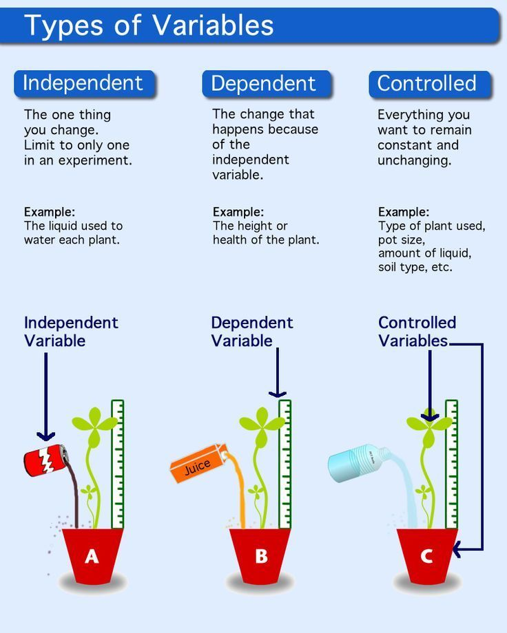 Science Infographic Description Of Unbiased Variable Dependent Variable And Management Control Infographicnow Com Your Number One Source For Dail Teaching Biology Biology Classroom Science Skills