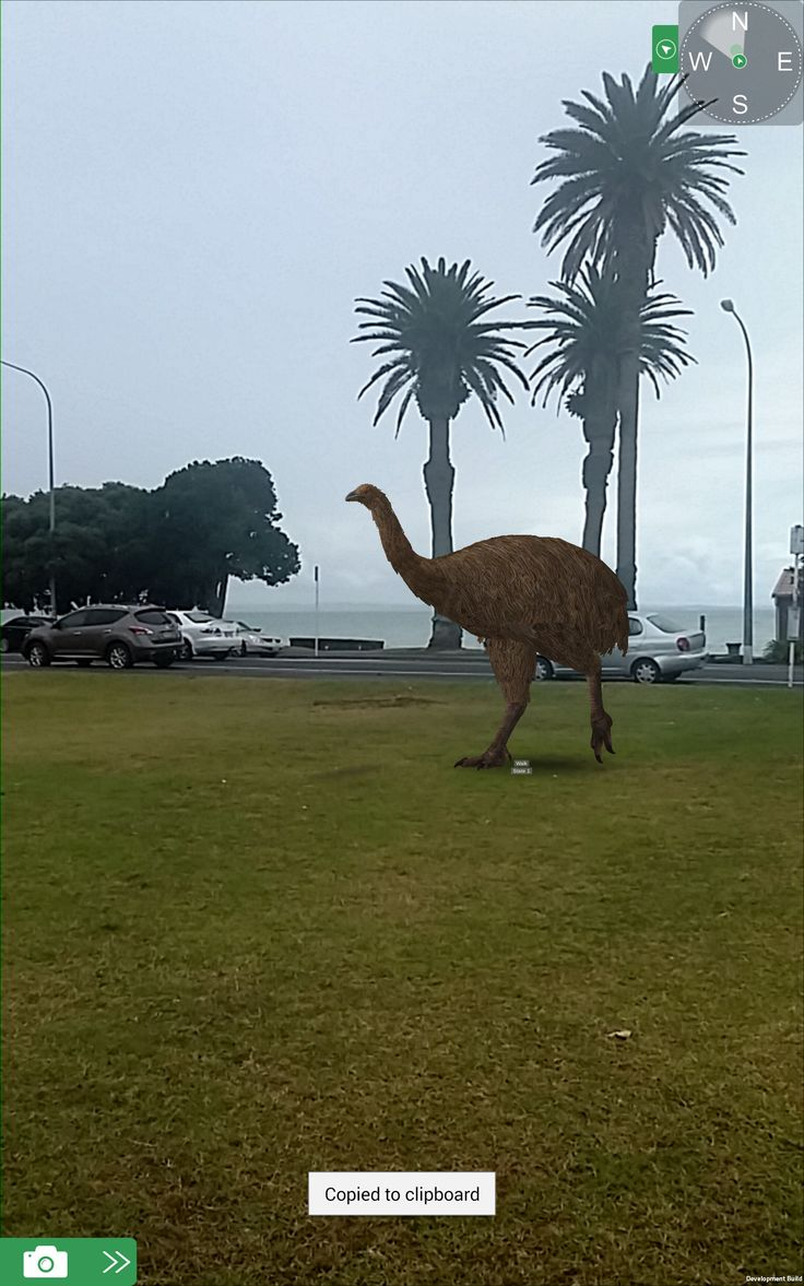 Test shot of our famous New Zealand extinct Moa wandering around in St Heliers using Augplay, which is a sister product of Augview using Augmented Reality to display our lovely big bird.