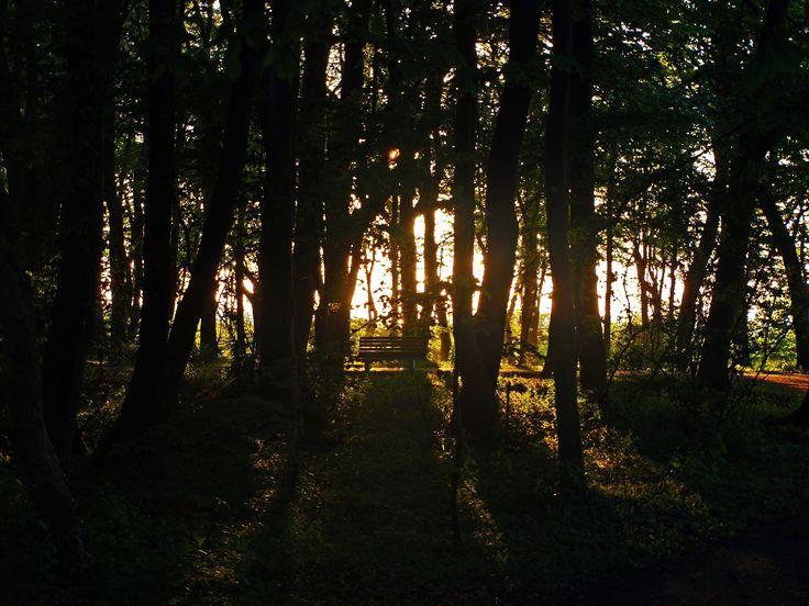 Summer Light, Kołobrzeg, Poland