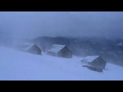 Winter Storm Ambience - Heavy Snowstorm Blizzard Howling