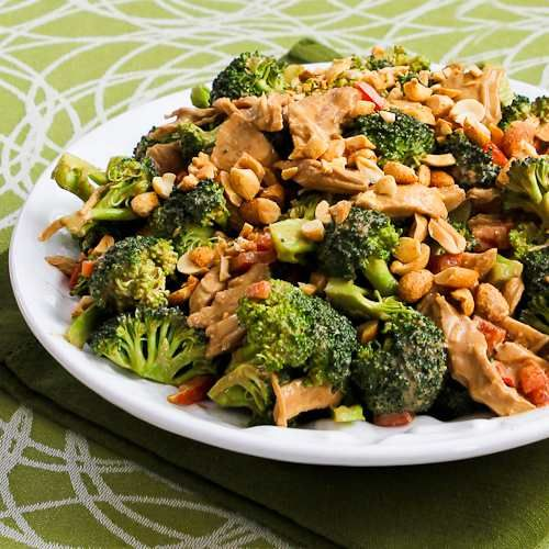 Chicken, Broccoli, and Red Bell Pepper Salad with Peanut Butter Dressing [#SouthBeachDiet Phase One from Kalyn's Kitchen]