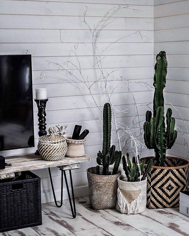 Le fameux MEUBLE TV #DIY fait avec les pieds @atelier_ripaton et une planche de coffrage qui vous a beaucoup plu sur snap  - #home #decoration #cactus #lover