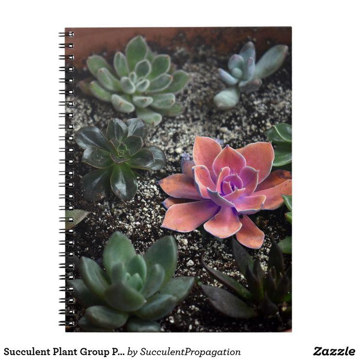 Succulent Plant Group Photograph Journals
