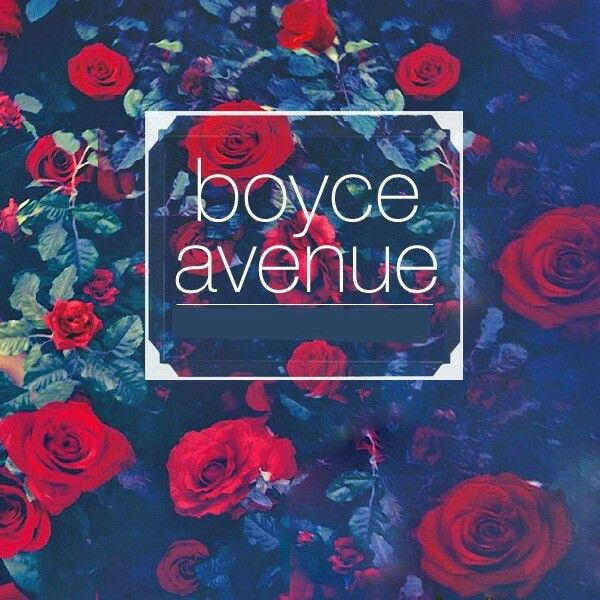 Avenue song lyrics