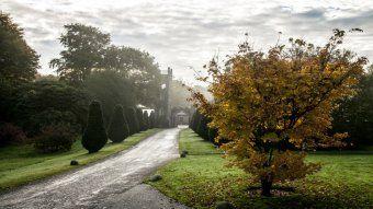 National Trust Rowallane Garden Mist Courtyard Co Down