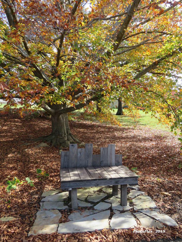 Beau Bernheim Forest (Cleremont, KY)