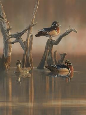 Scot Storm of Freeport, Minnesota, named 2014 Ducks Unlimited Artist of the Year