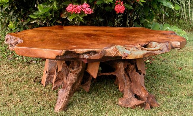 25 best ideas about tree stump coffee table on pinterest for Upcycled tree stumps