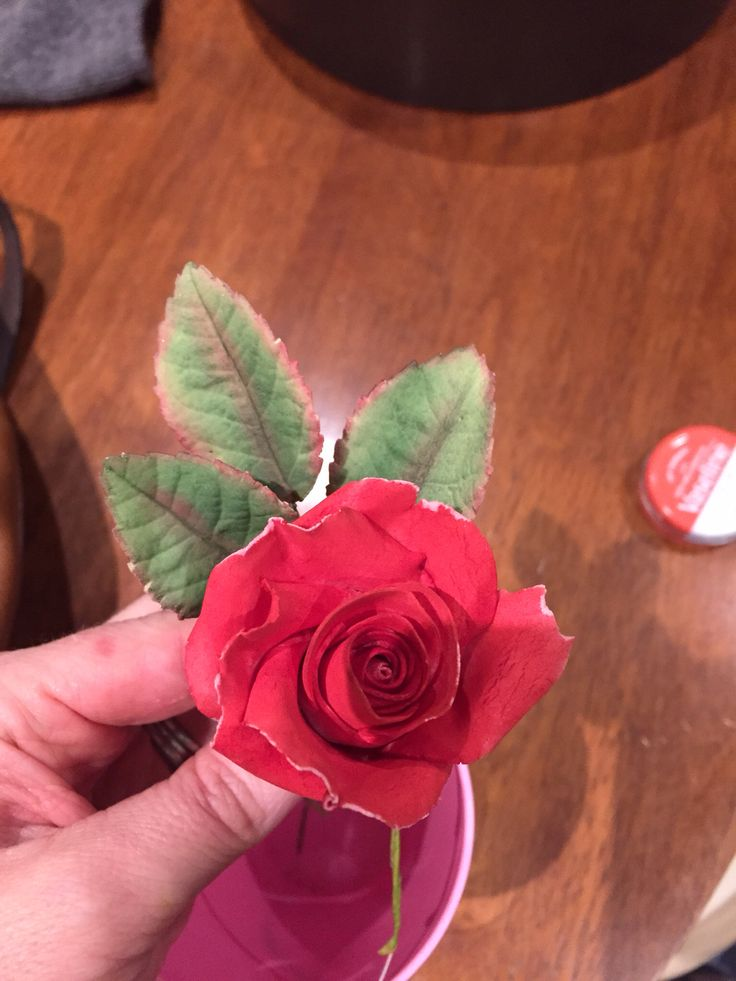First sugar paste rose