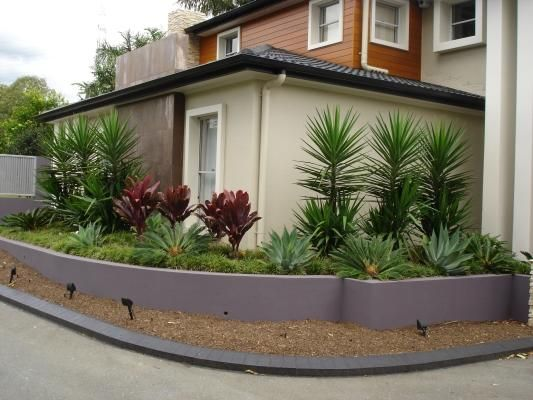 1221 best Succulent GARDEN images on Pinterest Gardens