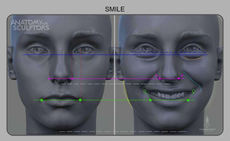 https://flic.kr/p/vSivgQ   Anatomy of Smile   Kickstarter: www.kickstarter.com/projects/sandiskondrats/head-and-neck...