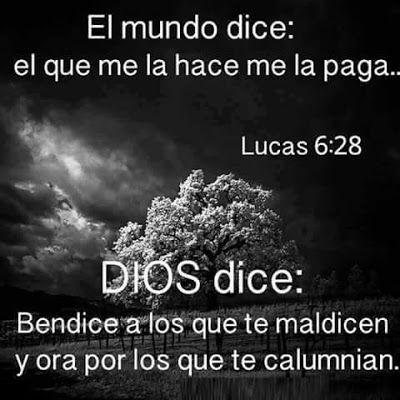 Carlos Martínez M_Aprendiendo la Sana Doctrina: Lucas 6:28
