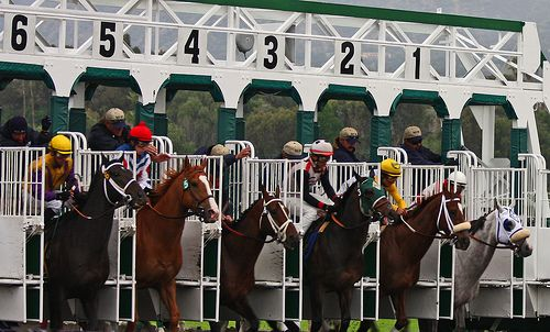 Lay betting system has created an opportunity for the common people to make money through horse race betting. The chances of winning money in this case are much higher than back betting. A simple registration with the betting exchanges will offer you this advantage.