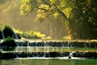 Sveglia all'alba per entrare nel Parco di Tikal in tempo per sentire la foresta che si sveglia e godere della suggestiva ...